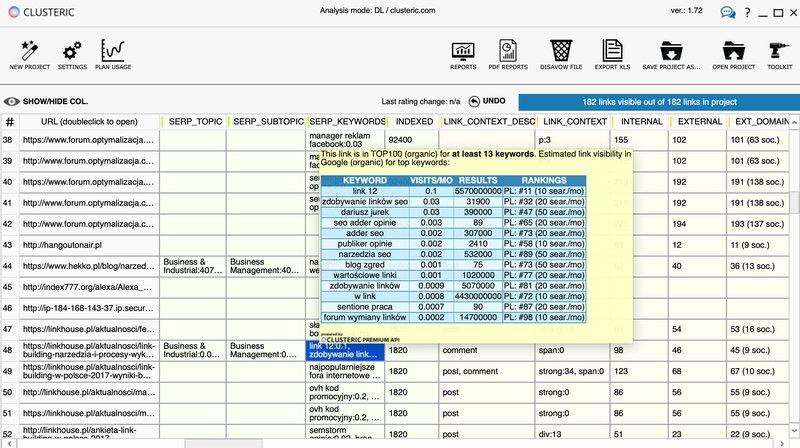 CLUSTERIC Search Auditor - analiza profilu linków / disavow